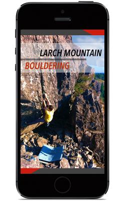 larch-app